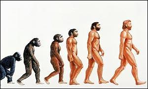 Asia podría ser el punto inicial de la existencia humana