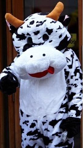 hombre disfraz vaca roba leche