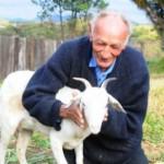 Anciano contraerá matrimonio con una cabra en iglesia satánica