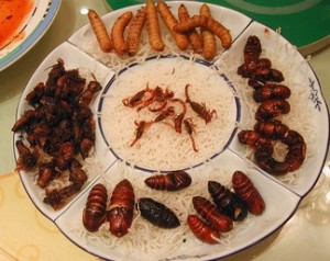 Plato a base de arroz e insectos